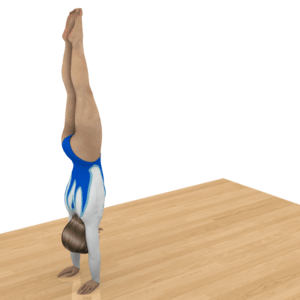 Handstand - The Handstand Basics